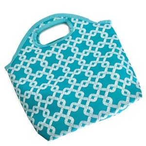 Other - Aqua Insulated Lunch Bag Cooler Tote